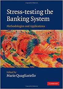 stress testing the banking system methodologies and applications
