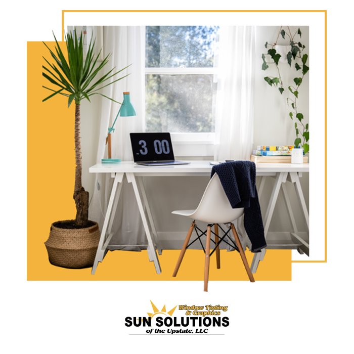 window film application solution substitute