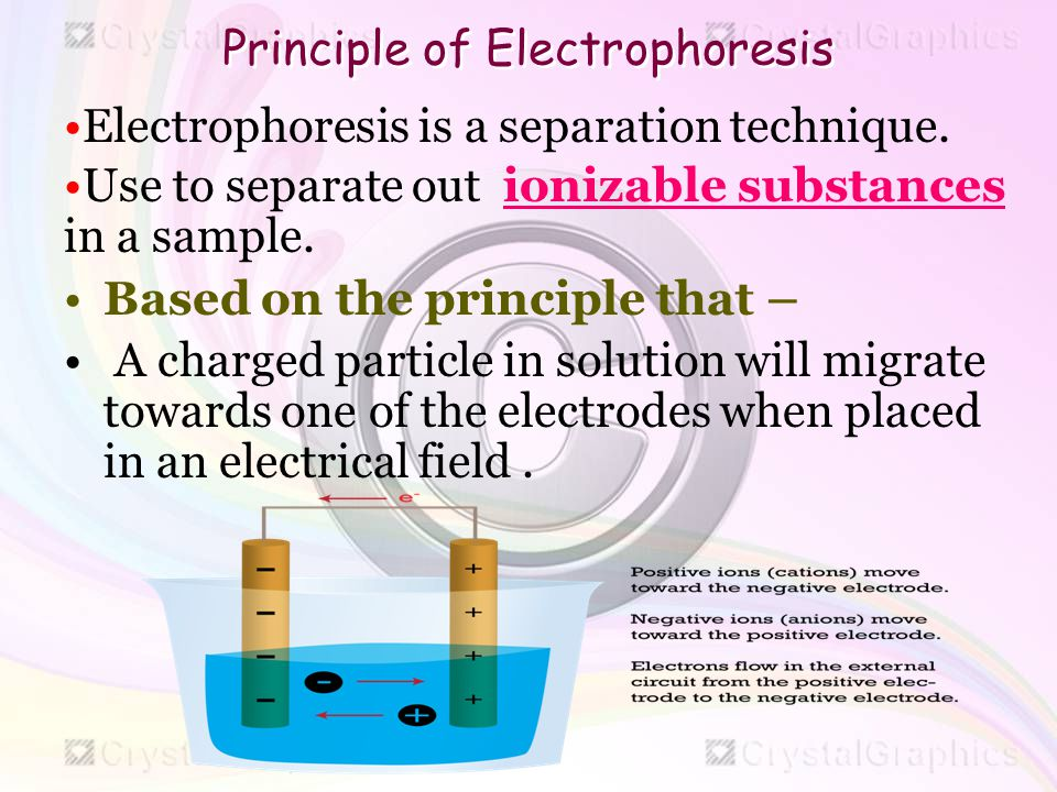 2d gel electrophoresis principle and application
