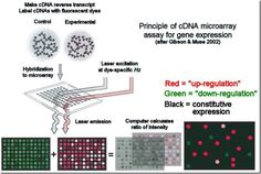 dna microarray technology devices systems and applications