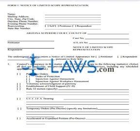 preparer of application ds 160 for child